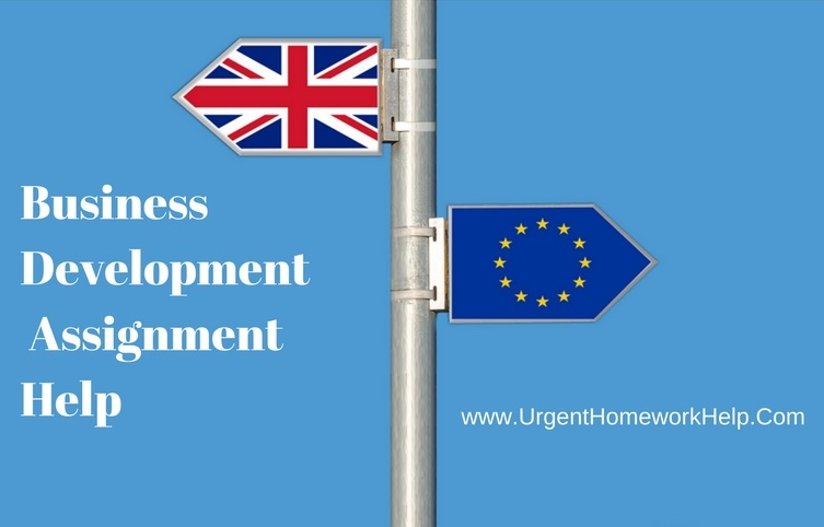 business development assignment help online
