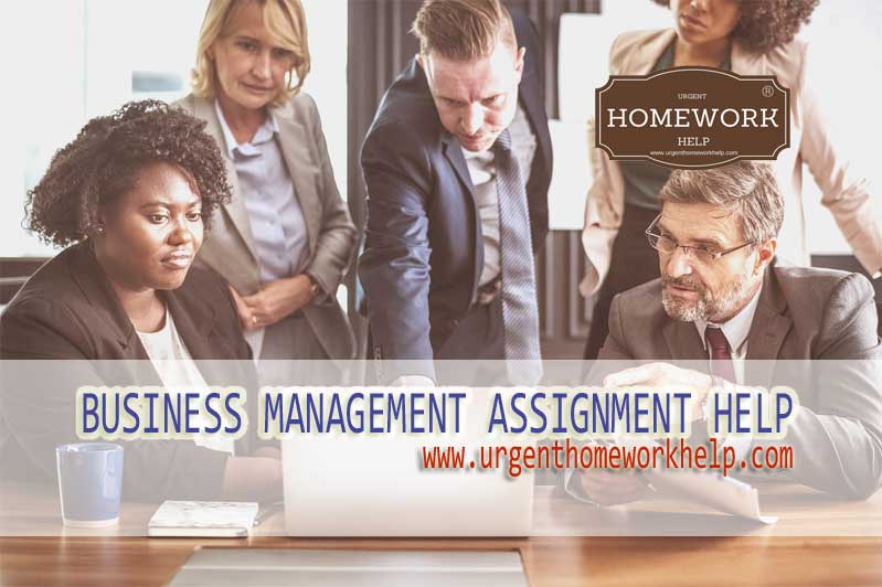 business assignment help online