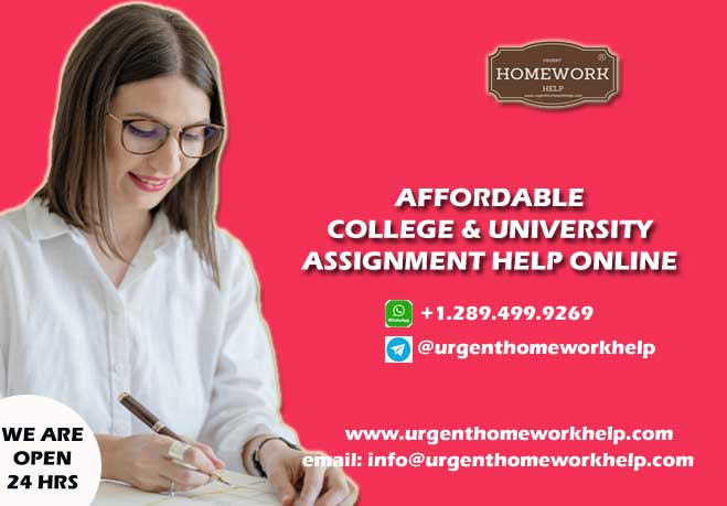 cheap assignment help online