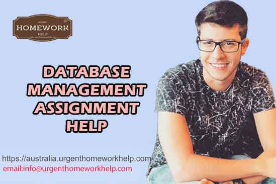 database management assignment help online